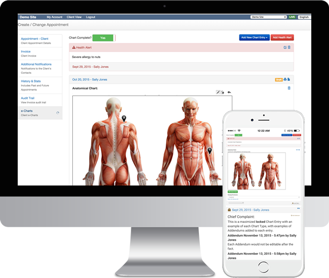 Physiotherapy clinic online patient charting for desktop and mobile