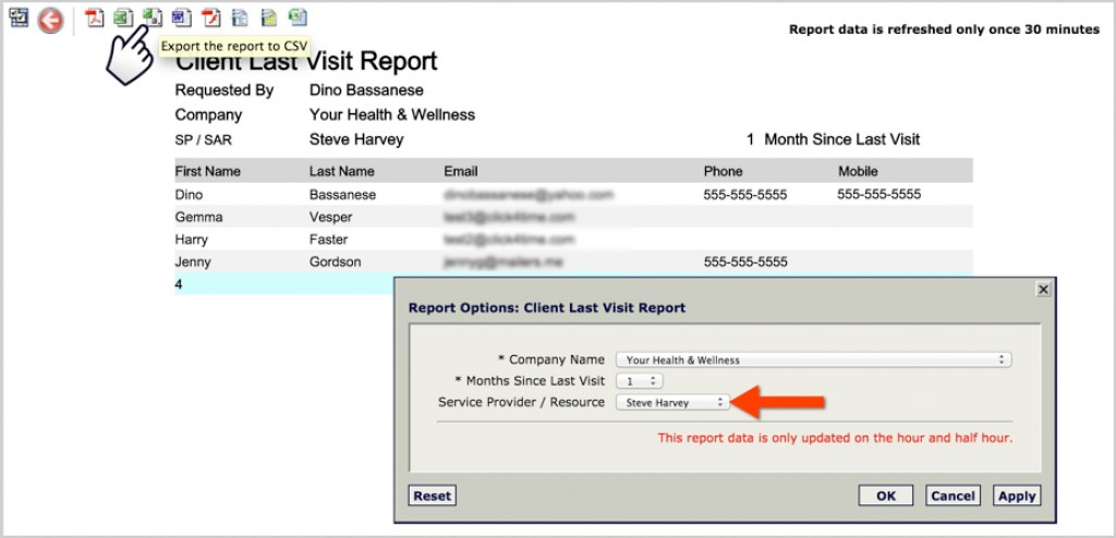 appointment booking system feature - client last visit report screen