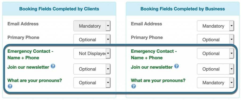 Custom data booking fields